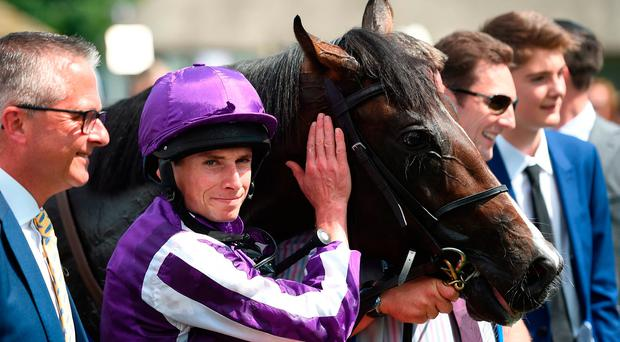 US Navy Flag leads from front in Group One double for O'Brien