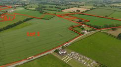 Land in Staholmog, Carlanstown, Kells, Co. Meath