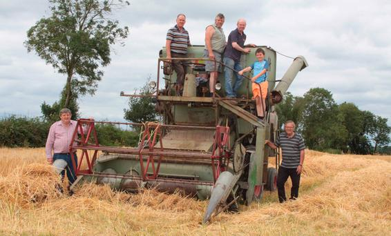 Eugene Crehan pictured with Michael Whelan (Owner of the 1966 vintage Claas harverter), Peter Niland, Jonathan Regan, Oisin Crehan and Padraig Booth ready to harvest winter barley in Mountbellew, Co Galway. The harvester was rolled out for the launch of the Mountbellew Vintage Festival which takes place on July 29. Photo: David Walsh