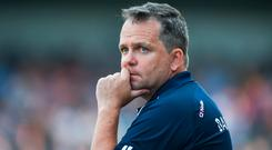 Wexford manager Davy Fitzgerald. Photo: Daire Brennan/Sportsfile