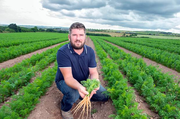 Vegetable farmer John Twomey Picture: Michael MacSweeney/Provision