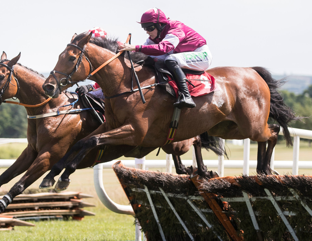 Due Diligence: Due Reward is picked to back up his Gowran Park maiden win by scoring on his first try in a handicap