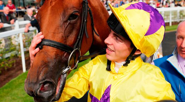 Haggas considers York plan for Curragh heroine Sea Of Class