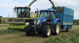 The Kirwans' 151-registered Claas Jaguar 860 picking second-cut silage