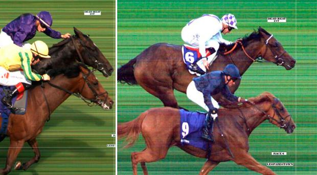 There were two dead heats in Leopardstown yesterday