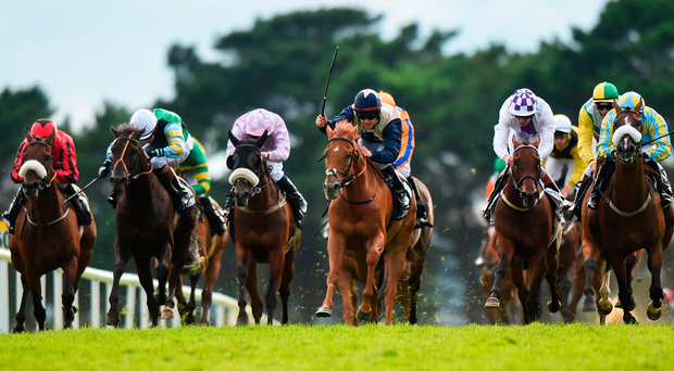 Galway Races Day 1: Expert tips and race-by-race guide as the action gets underway in Ballybrit