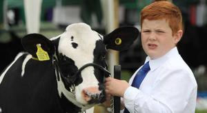Young dairy handler Adam Torrens from Garvagh, Co Derry.