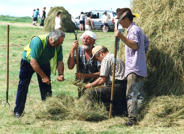 Twisting a hay rope during the Traditional Haymaking Festival in Trim, Co Meath, from left, Joey Hyland, Tony O'Sullivan, Tom Darby and Robert Douglas. (July 3, 2005)