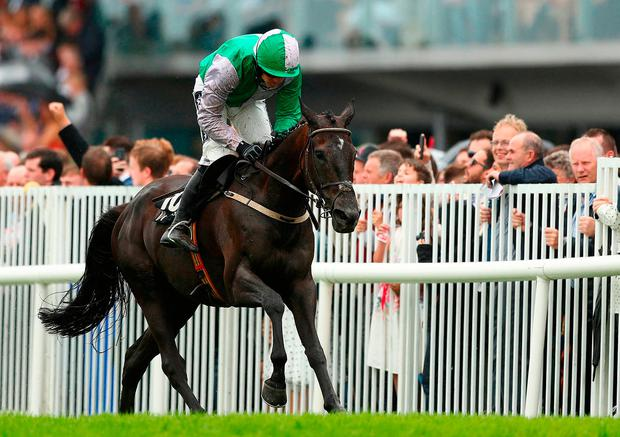 Minella Beau ridden by Ruby Walsh on the way to winning the Guinness Beginners Steeplechase on day four of the Galway Summer Festival at Galway Racecourse. Photo: PA