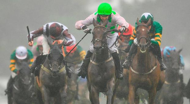 Galway Day Five: A race-by-race guide, all the top tips from our expert team and our lay of the day
