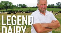 Garry Hurley with his Friesian herd.