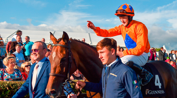 Nessun Dorma continues Galway domination for Willie Mullins