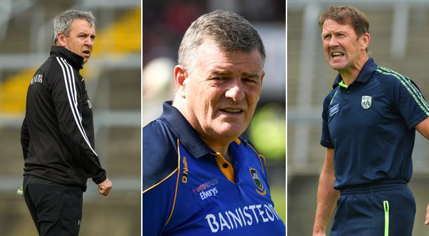 Peter Keane, Jack O'Connor and Liam Kearns are being touted