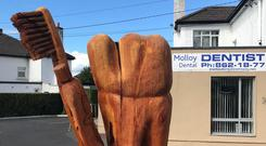 The tooth and toothbrush were sculpted by British-based tree carver Tommy Craggs. Photo: Robert Molloy