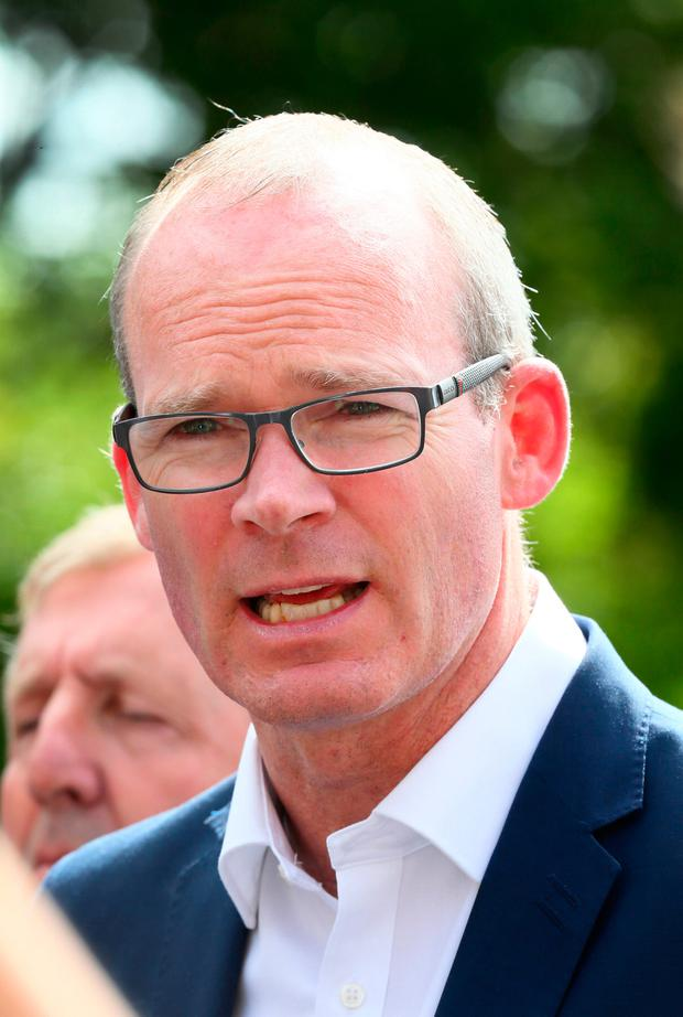 Tánaiste Simon Coveney is leading Ireland's preparations for the effects of Brexit. Picture: Frank McGrath