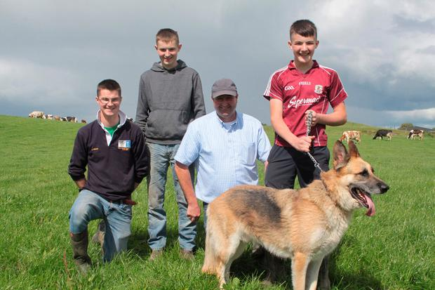 Brendan Gildea with his sons James, Brendan and Andy with their German Shepherd Cody. Photo: David Walsh