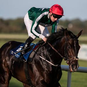 Pincheck steam away with the Desmond Stakes at Leopardsdown last night. Photo: Racing Post