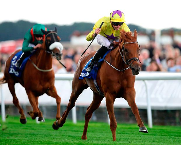 QUALITY: Sea Of Class on the way to winning the Darley Yorkshire Oaks. Photo: PA Wire