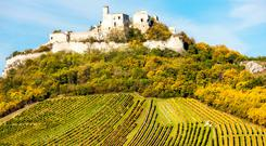 Ruins of Falkenstein Castle with vineyard below in Austria