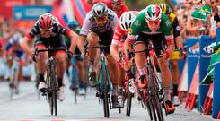 Quickstep rider Elia Viviani (R) winds up for the sprint finish as he takes the stage honours on stage 3 of the Vuelta a Espana. Photo: AFP/Getty Images