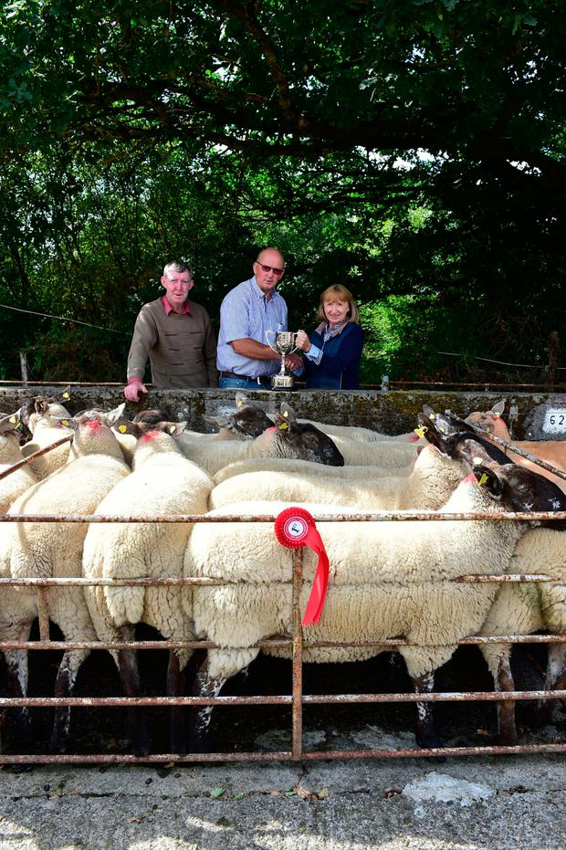 Joe Wall and Brendan Byrne present the cup for the best pen of ten Suffolk Cross to Hilda Rothwell at the Bagenalstown Ewe Breeders Assocation show and sale in Borris. Photo: Roger Joines.