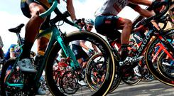 The pack start the 11th stage of the 73rd edition of