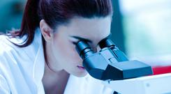 Malin was established to invest in innovative life sciences companies. Photo: Stock Image