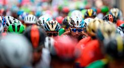 The pack starts the 12th stage of the 73rd edition of