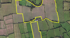 This 70ac tillage farm located between the villages of Clogheen and Ardfinnan.