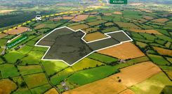 The 157ac block of land is located at Blackrath, Colbinstown, near Kilcullen in Co Kildare