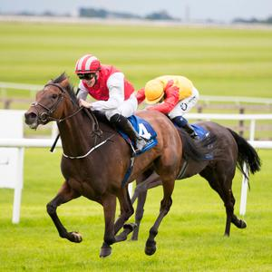 ON THE RISE: Rovetta and Shane Crosse winning at the Curragh last month. Photo: Patrick McCann/Racing Post