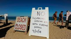 Signs at the top of the dune at Newcomb Hollow Beach alert visitors that the beach is closed to swimming, following the shark attack. Photo: AP
