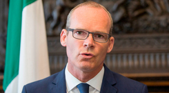 Warning: Simon Coveney said Mrs May will have to deliver on promises. Photo: Mark Condren