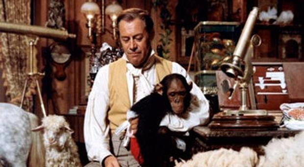 Doctor Dolittle animal fantasy could become reality with AI