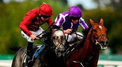 Close encounter: Roaring Lion, and Oisin Murphy (left) finish strongly to edge out Saxon Warrior (Ryan Moore) on their way to landing the QIPCO Irish Champion Stakes on Saturday. Photo: Sam Barnes/Sportsfile