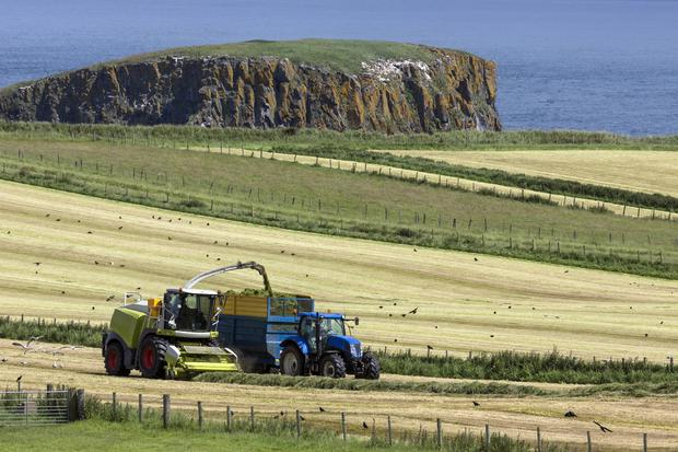 The situation has been exacerbated by a shortage of tractor drivers. Stock Image
