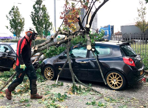 A tree is removed from a car in Belfast after falling as a result of Storm Ali. Photo: PA
