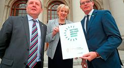 Simon Coveney was joined by Business Minister Heather Humphreys and Agriculture Minister Michael Creed in announcing a series of public outreach events, dubbed 'Brexpo' meetings, in Cork, Galway, Monaghan and Dublin next month. Photo: PA