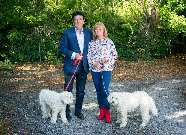 LUCKY STREAK: RTE Sports presenter Des Cahill and his wife Caroline Curran with their dogs Lauren and Harvey. Photo: Tony Gavin