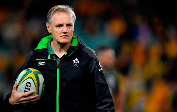 Joe Schmidt will decide his future soon