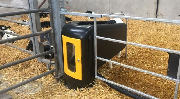 New Calf Feeder Designed To Feed Two Different Milk Replacers And Up
