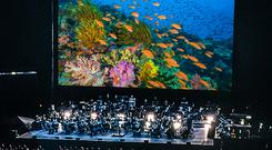 Blue Planet II- Live in Concert