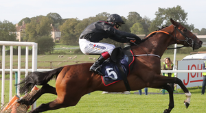 Kuiper Belt can bounce back at Clonmel today
