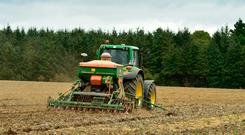 Ciaran Phelan planting 13 acres of Casia winter barley in Kyle, Gowran, Co Kilkenny last week. Photo: Roger Jones.