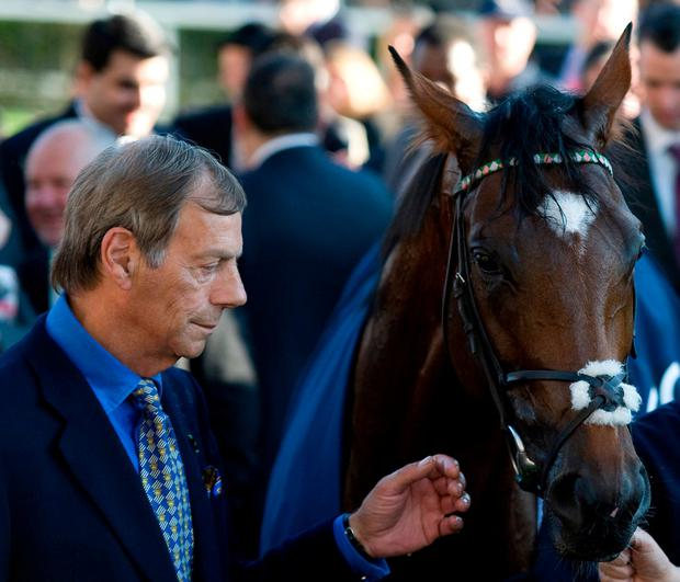 Trainer Henry Cecil with Frankel at Ascot in 2011. Photo: Alan Crowhurst/Getty Images