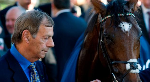 Cecil's wonder horse Frankel creating a new empire in his own image