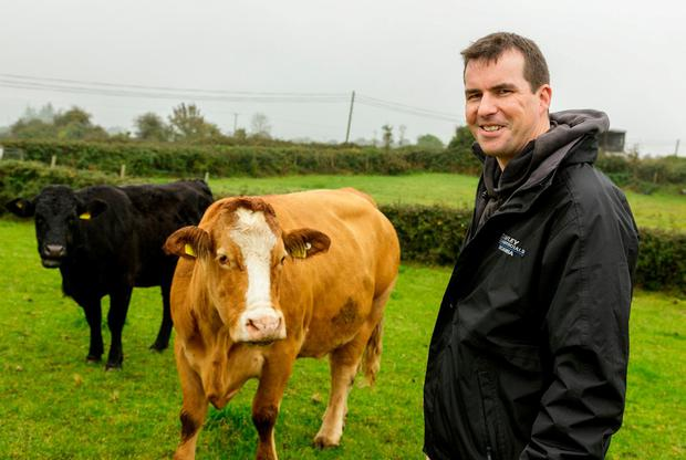 Income: Trevor Boland on his farm in Dromard, Co Sligo. Photo: James Connolly