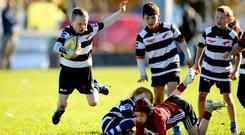 Players enjoying the fun at the Aviva Mini Rugby Festival at Galway Corinthians last weekend. Photo: INPHO/Ryan Byrne
