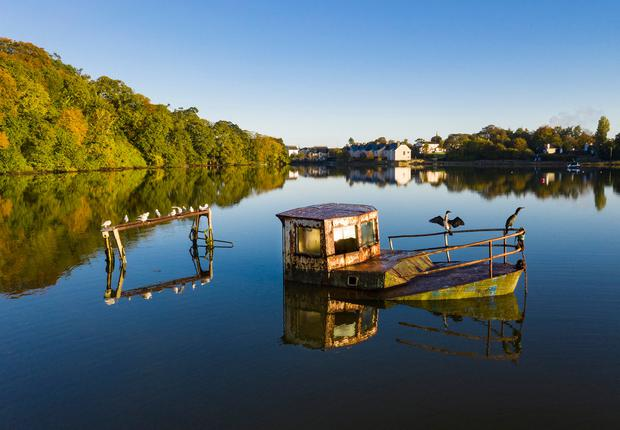 Resting place: An old abandoned boat which is now a perch for local birds on the Owenacurra river in Midleton, Co Cork, in the early autumn sunshine. Photo: Cathal Noonan