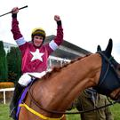 WINNER: Road To Respect, with Seán Flanagan up, after winning the Leopardstown Christmas Steeplechase last December. Photo: David Fitzgerald/Sportsfile